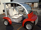 Ford Think Neighbor : Orange 2 Seater | Golf Cart : LSV Carts
