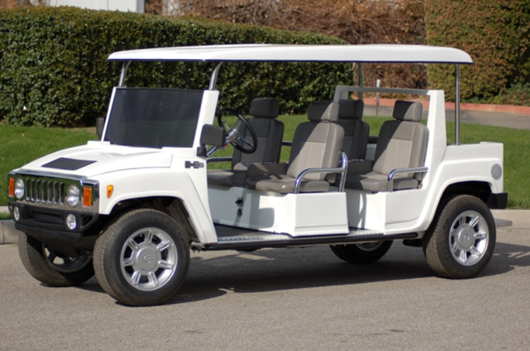 T-Sport Golf Carts : Sales, Service, Rentals and Consignment | LSV on golf cart covers walmart, club car golf cart wheel covers, golf cart storage covers, gray and black steering wheel covers, golf cart steering wheel covers,